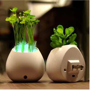 led-desktop-pot-plants